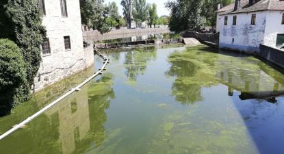 Poluição no rio Pavia