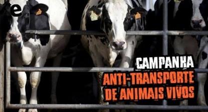 Campanha Anti-Transporte de Animais Vivos | ESQUERDA.NET