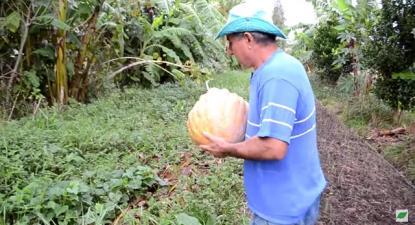 Os pesticidas não entram no assentamento Contestado. Foto: reprodução do filme.