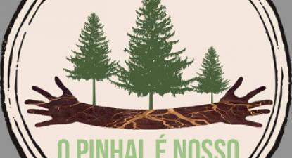 Pinhal de Leiria: população pede intervenção urgente do Governo